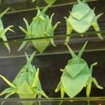 insectos-de-papel-bar-original-bosc-de-les-fades-barcelona