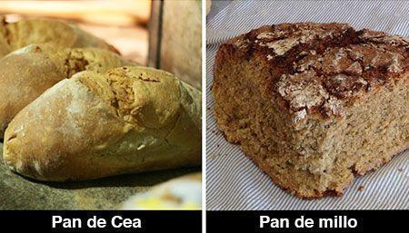 pan-gallego-panes-galicia