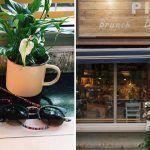 Picnic Restaurant, cenas y brunch en un rincón tranquilo del Born