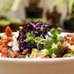 Aguaribay, un restaurante vegetariano para fascinarte con las verduras